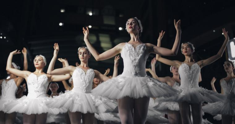 Presenting a great classic - Swan Lake