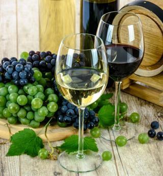 A la découverte du monde du vin
