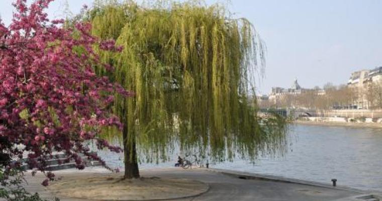 Share our secret Parisian gardens